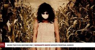When Two Evils Become One | Monsanto-Bayer Merger Proposal Agreed