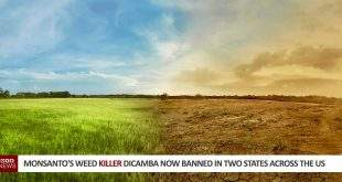 Monsanto dicamba banned in two states