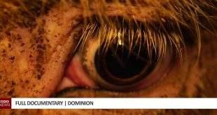 Dominion Full Documentary