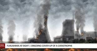 Fukushima Catastrophe