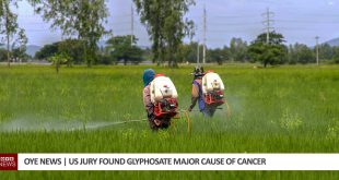 Jury found that Glyphosate major cause of cancer